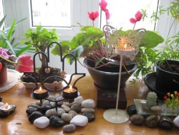 foto flori cabinet