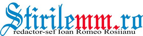 logo-STIRIMM