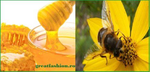 Beneficiile mierii, in functie de afectiunea pe care o ai