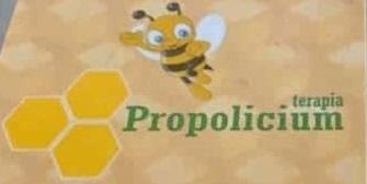Terapia Propolicium. 14 boli si afectiuni in care este eficienta